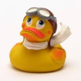 Pilot Duck - Bild vergrößern