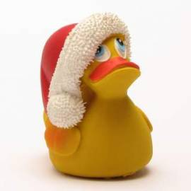 Santa Duck - Bild vergrößern