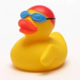 Quietscheente Schwimmer - Bild vergrößern