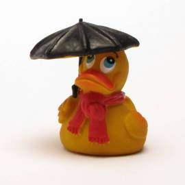 Rainy Days Duck - Bild vergrößern